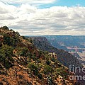 Environment Of The Canyon by Kathleen Struckle