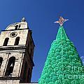 Environmentally Friendly Christmas Tree by James Brunker