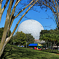 Epcot Globe Walt Disney World by Thomas Woolworth