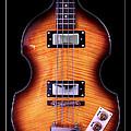 Epiphone Viola Bass Guitar by John Cardamone