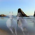 Equine Beach II by Athena Mckinzie