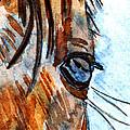 Equine Reflection by Elizabeth Briggs