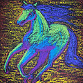 Equus by Brenda Salamone