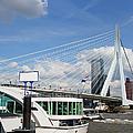 Erasmus Bridge In Rotterdam City Downtown by Artur Bogacki