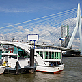 Erasmus Bridge In Rotterdam Downtown by Artur Bogacki