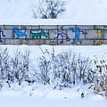 Erie Canal Graffiti by Roger Bailey