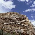 Eroded Sandstone Zion Np Utah by Konrad Wothe