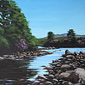 Erriff River by Tony Gunning