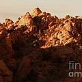 Escalante Ridge by Tim Richards
