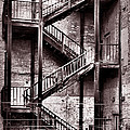 Escape by John Cardamone