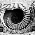 Escheresque by Alexis Birkill