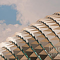 Esplanade Theatres Roof 01 by Rick Piper Photography