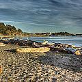 Esquimalt Lagoon - Logs And Beach by Dorothy Hilde