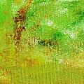 Essay Star Green by L J Smith