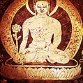 Etched Buddha  by Tim Gainey