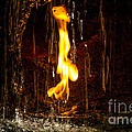 Eternal Flame  by Darleen Stry