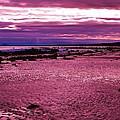Eternal Tides by Barbara St Jean