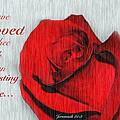 Eternal Valentine by Debbie Nobile