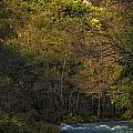 Eume River Galicia Spain by Pablo Avanzini