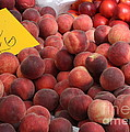 European Markets - Peaches And Nectarines by Carol Groenen