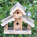 Evans's Birdhouse - Oil Paint by Image Takers Photography LLC - Carol Haddon