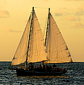 More Sails In Key West by Bob Slitzan