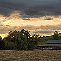 Evening Farm Scene Near Ashland by Mick Anderson