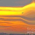 Evening Flight by Irfan Gillani