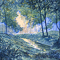 Evening In Wykeham Forest by Glenn Marshall