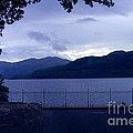 Evening Light At Inversnaid by Joan-Violet Stretch