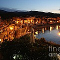Evening Light In Collioure by Carol Groenen