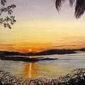 Evening Marsh by Julia RIETZ