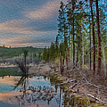 Evening On The Banks Of A Beaver Pond by Omaste Witkowski