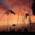 Evening On The Beach by Aimee Vance