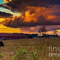 Evening On The Farm Five by Ken Frischkorn