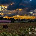 Evening On The Farm One by Ken Frischkorn