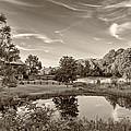 Evening Pond Sepia by Steve Harrington