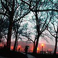 Evening Rain Photofresco by Joseph Hedaya