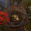 Evening Roses by Angela Stanton