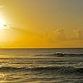Evening Surf by Brandon Bourne