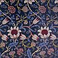 Evenlode Design by William Morris