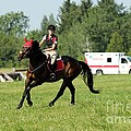 Eventing Fun by Janice Byer