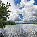 Everglades Lake - 0278 by Rudy Umans