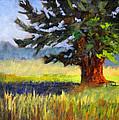 Evergreen by Nancy Merkle