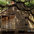 Evergreen Plantation Slave Quarters by Kathleen K Parker