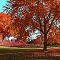 Every Year I Miss Autumn After It Is Over by Adri Turner