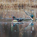 Everybody Deserves Somebody by Bill Wakeley