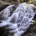 Evolution Waterfall by Shauna Milton