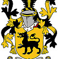 Ewers Coat Of Arms Irish by Heraldry