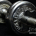 Exercise  Vintage Chrome Weights by Paul Ward